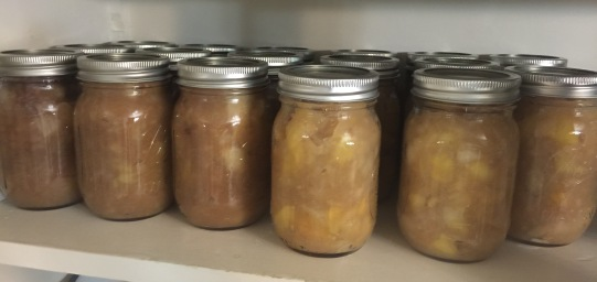 Homemade applesauce would pair nicely with the chicken soup.