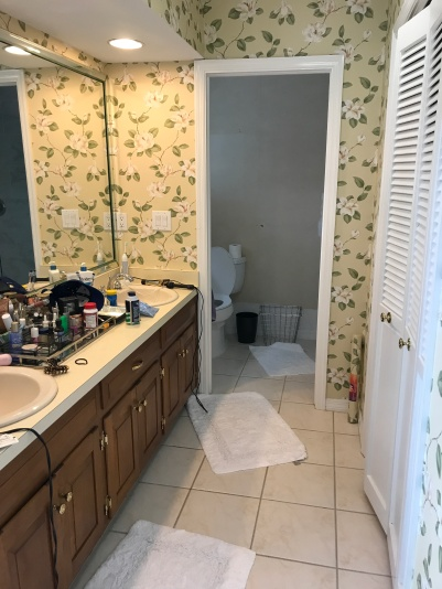 """What we saw when we walked in - the toilet and the shower were both in that """"closet""""."""